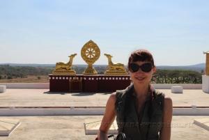 Олень - символ буддизма